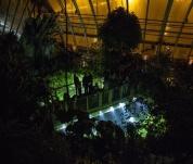 Večerní prohlídky skleníku Fata Morgana