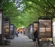 Praha světová - výstava k 25 letům v UNESCO